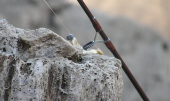 Zákon č. 216/2018 Z. z. o rybárstve platný od 1.1.2019